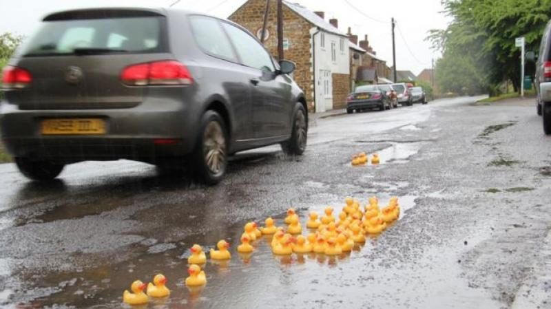 rubber ducks in a puddle on a road in the uk