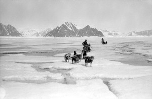 old arctic expedition with dog sled