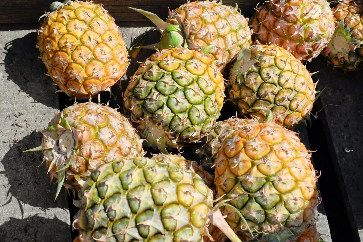 pineapples lay out in sun on stall in China