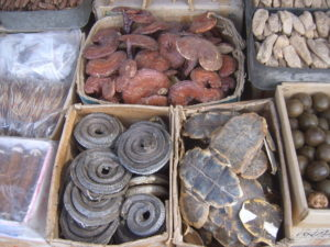 top view traditional chinese medicine ingredients