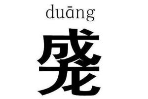 new chinese character for slang word duang