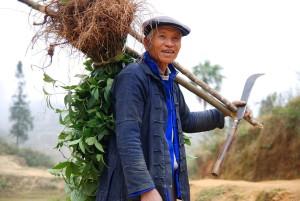 Chinese farmer carrying farming equipment