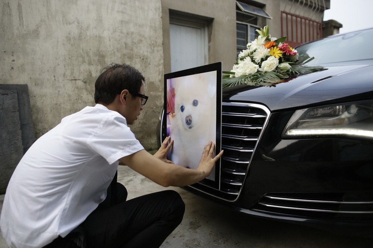 man attaching photo of a dog onto the front of a funeral car