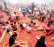 tomato festival south korea