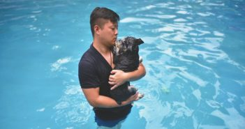man with dog in swimming pool