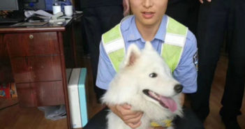 policeman with a dog in china