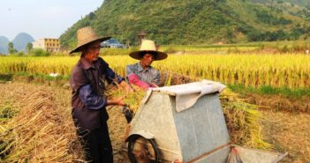 two farmers working the field in sichuan