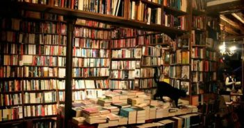 cat in a bookstore in china