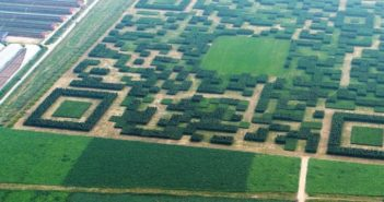areal view of QR code cut into a field