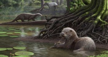 animated image of a prehistoric otter