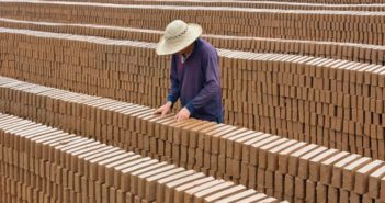 worker with a lot of bricks