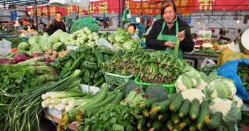 vegetable market in shanghai
