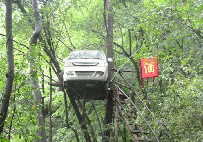 van tree house in china