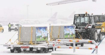 two pandas arriving in finland from china