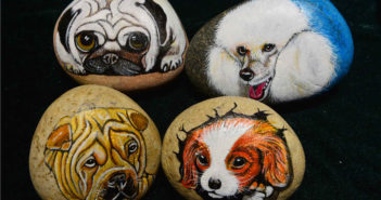 dog images on stones
