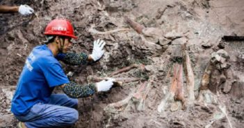 worker excavating a dinosaur fossil in china
