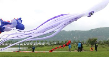 giant cuttlefish kite