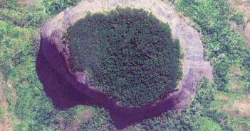 arial view of rainforest on top of mount lico