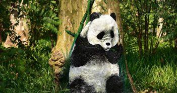 panda painting on a tree in shanghai