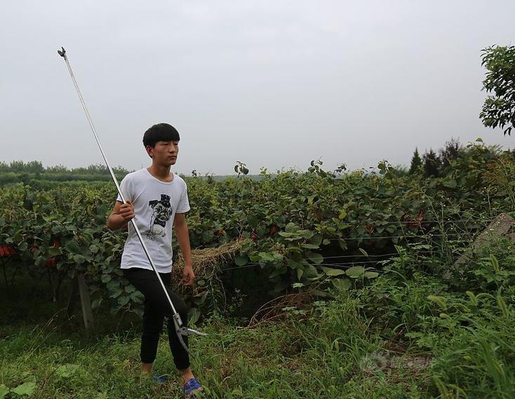 boy walking through garden in china