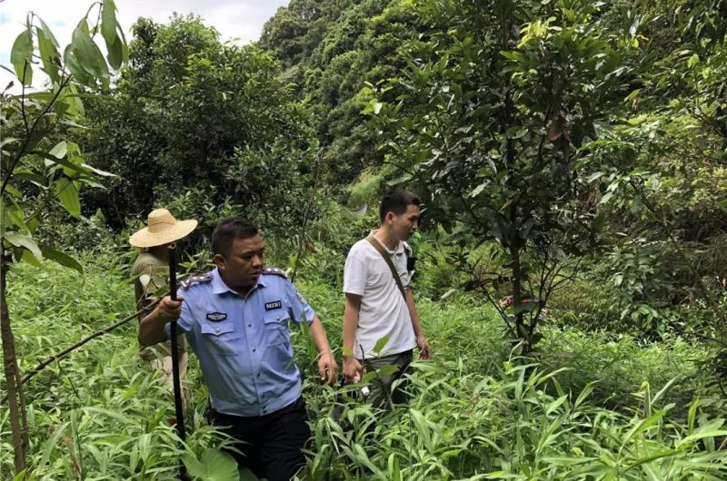 policeman and 2 farmers searching woods in china
