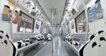 carriage of panda express train in chengdu