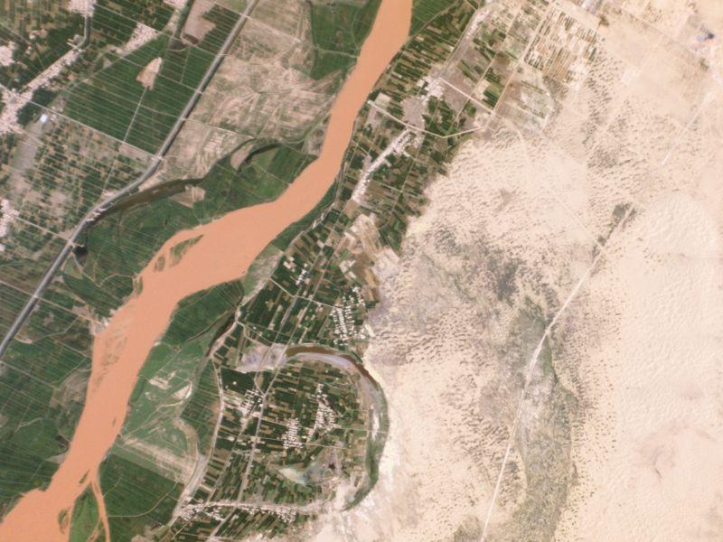宁夏防治荒漠化项目见成效