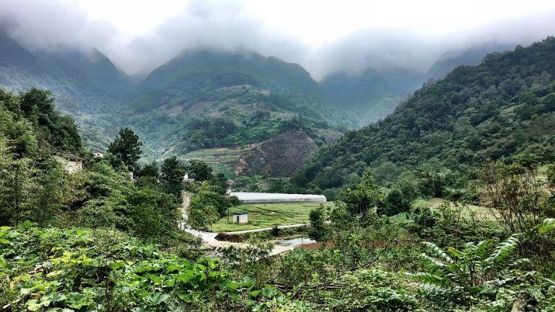 中国自然森林达到两亿公顷