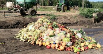 food waste at a farm