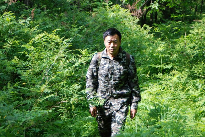 man walking through forest in army clothes