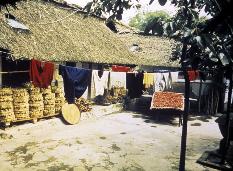 house with thatched roof and clothes hanging outside