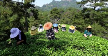 farmers in fujian province