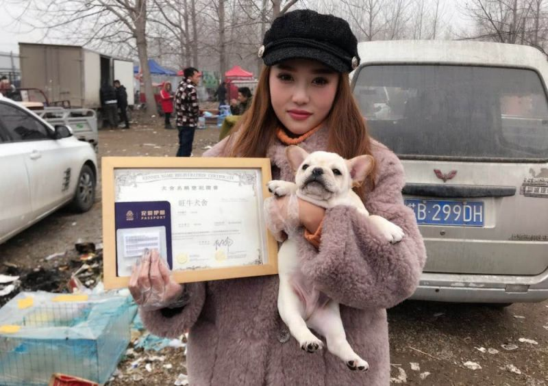 girl holding certificate and small dog