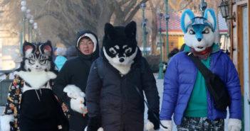 people wearing animal hats in harbin