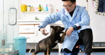 scientist with cloned dog in china
