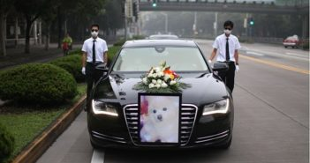 front view of funeral car with picture of dog on front