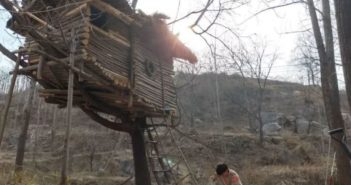 man building tree house in forest