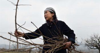 woman carrying sticks