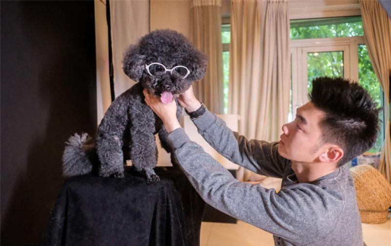 man dressing dog for photo shoot