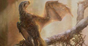 artist depiction of bat like dinosaur