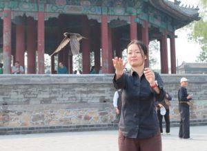 woman releasing a beijing swift in forbidden city
