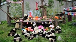 baby panda birthday party
