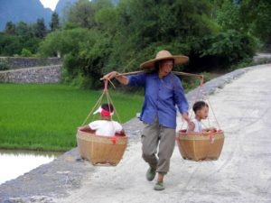 woman carrying two boys in baskets
