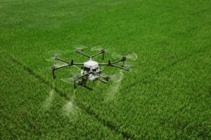 drone spraying over crop field