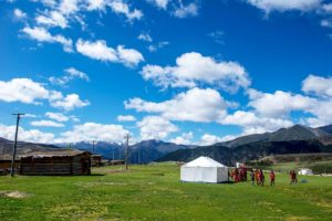 people in field on sunny day in tibet