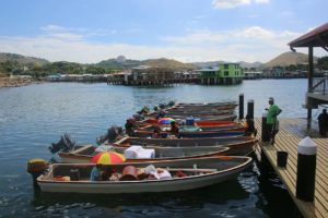 line of fishing boats docked