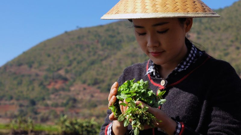 country girl holding plant in china