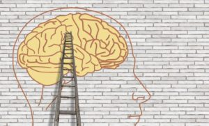 ladder leading to wall with depiction of human head and brain