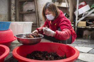 crayfish farmer in china