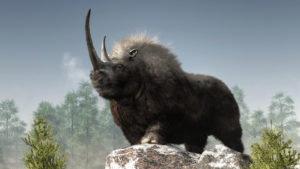 computer image of woolly rhino